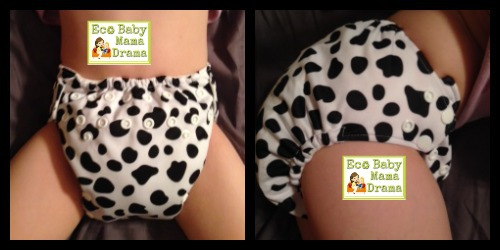 little bee co cloth diaper