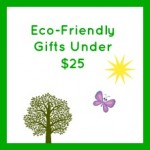 eco friendly gifts under $25 button